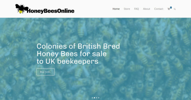 Portfolio image for Honey Bees Online - Another website by Brighton WebTech